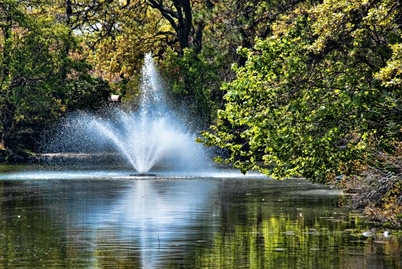 Fountain on Spring Lake