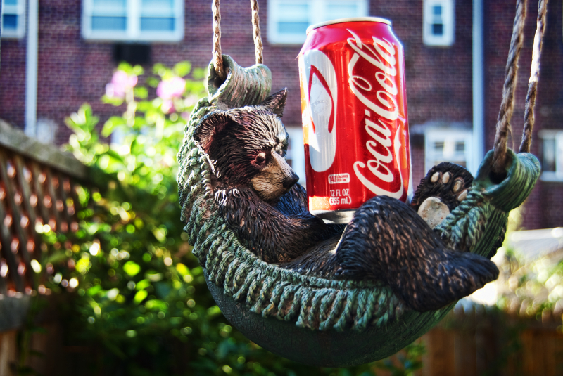 A small bear resting on a hammock with Coca cola