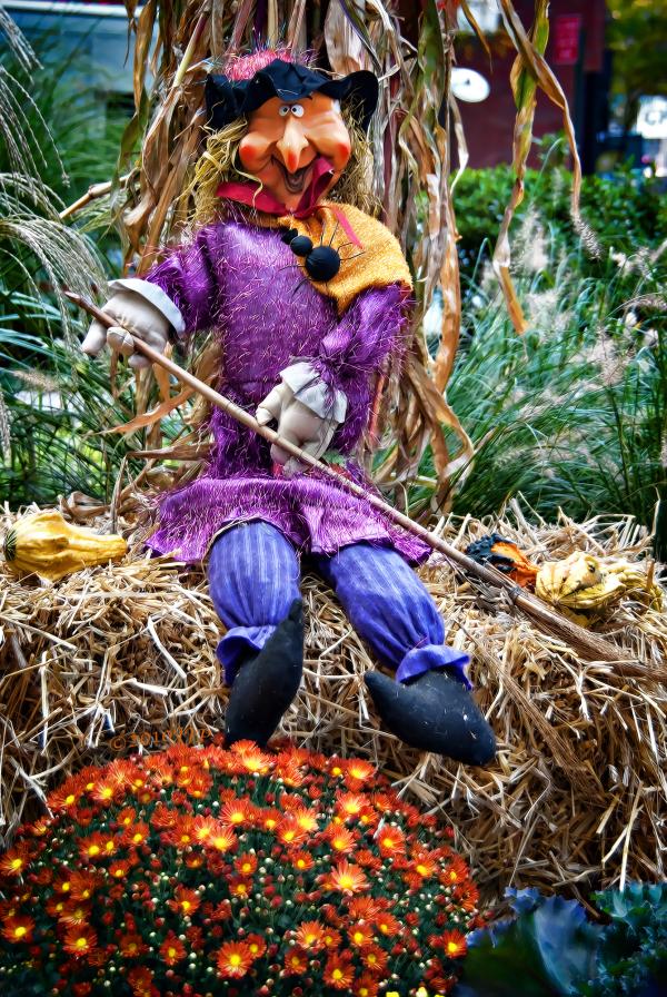 Autumn/Fall decorations