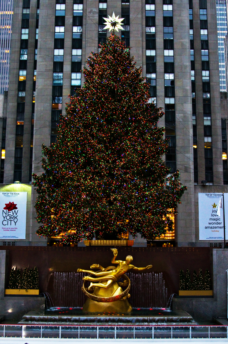 The tree at the Rockerfeller centre