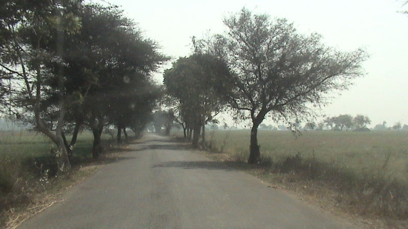 Road view in morning hours