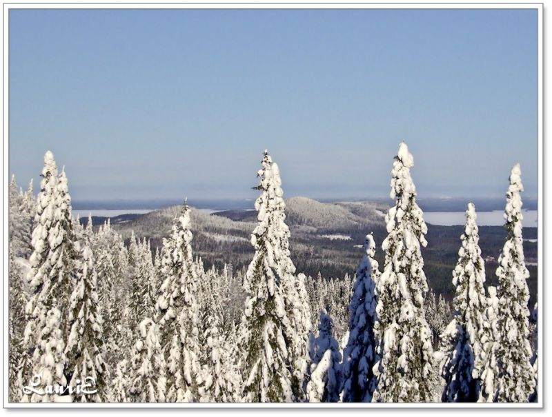 A view from Koli