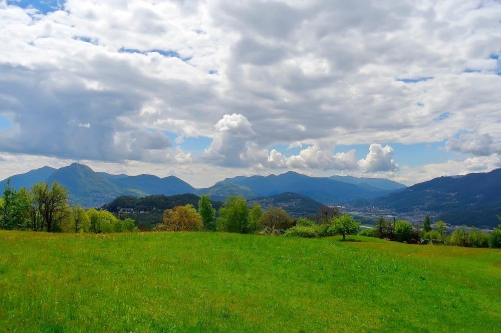 Pasture Genovesi