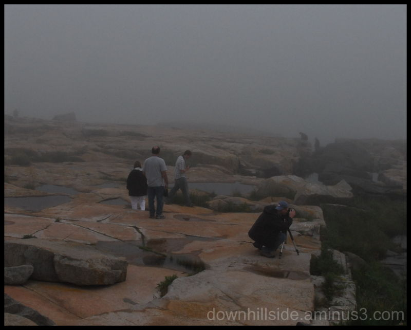 A Foggy Day at Schoodic Point