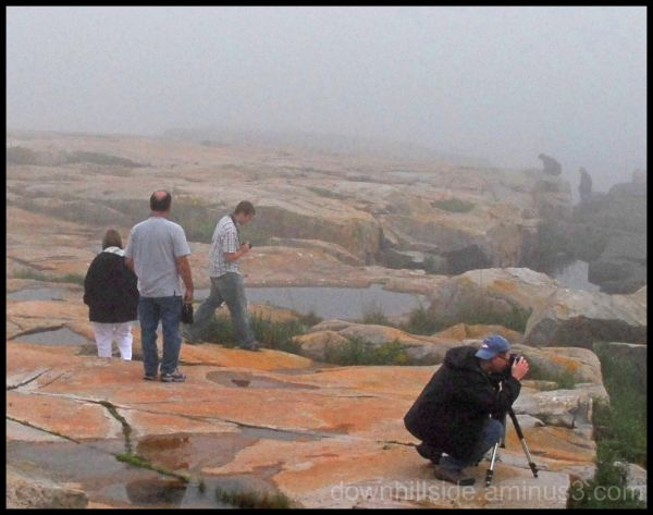In The Fog at Schoodic Point