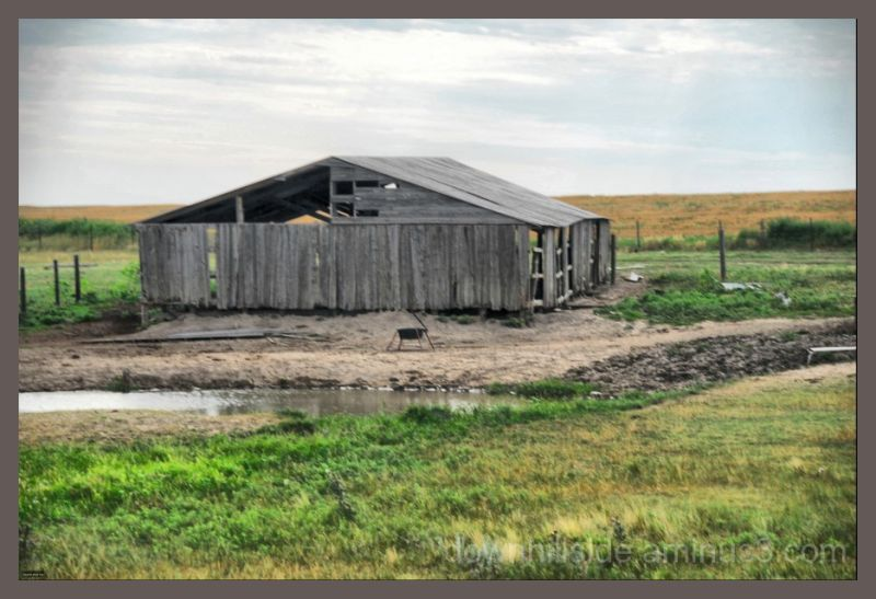 Cattle Shed on the Great Plains