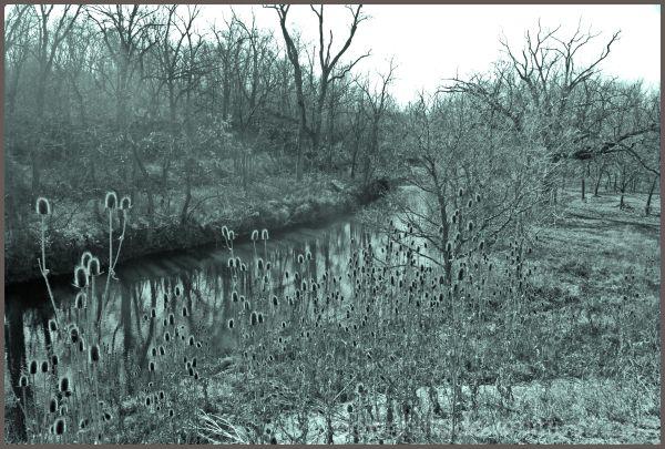 A River Runs Through It!