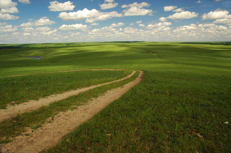 Kansas prairie