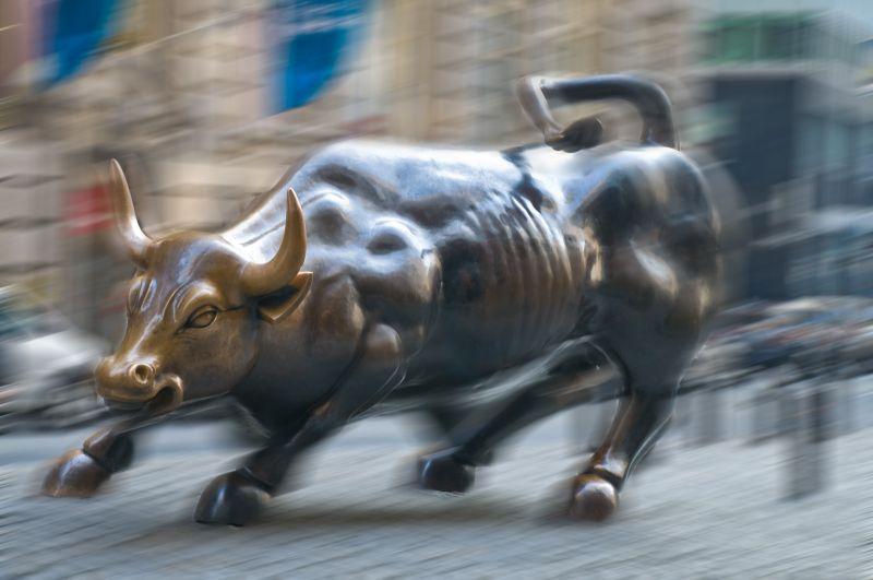 New York Bull
