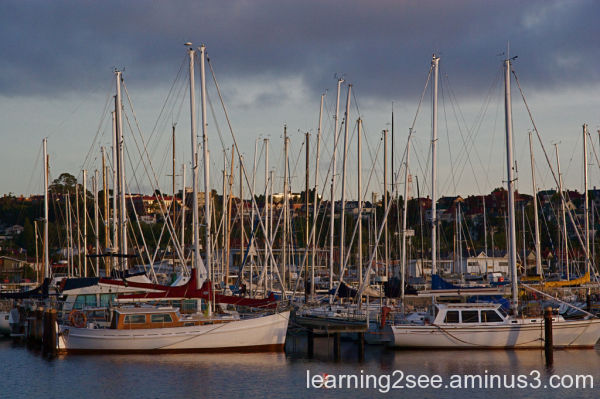 Busy boat harbour