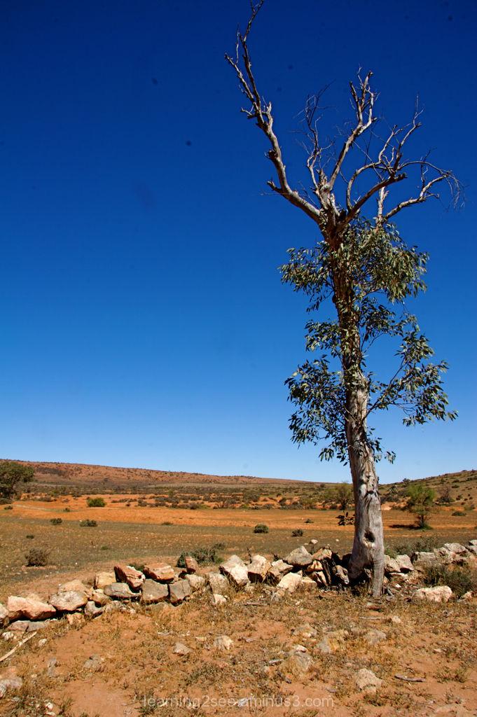 Kanyaka Homstead Historical Site, Flinders Rangers