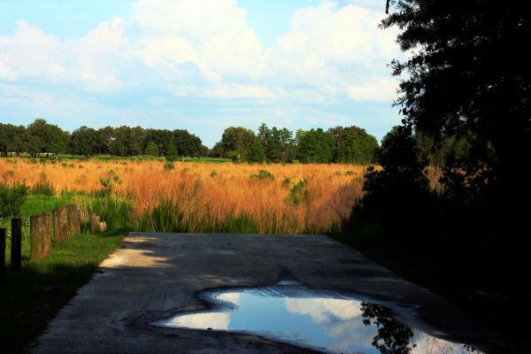 Missing Lake