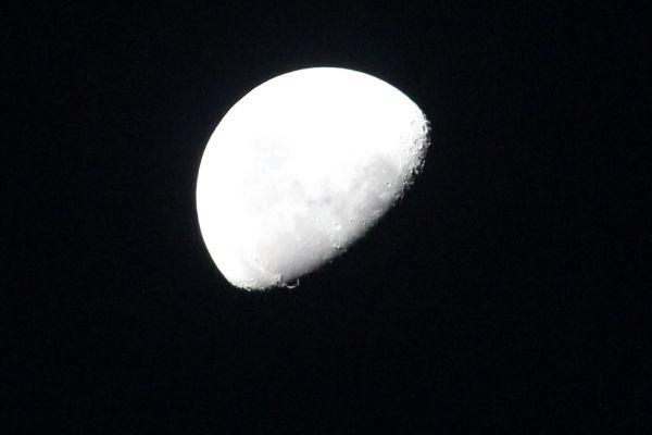 The Moon for Ya