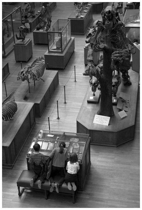 Des enfants au musée.