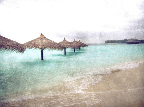 (98) Maldives
