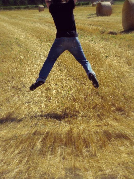 (233) Summer jump