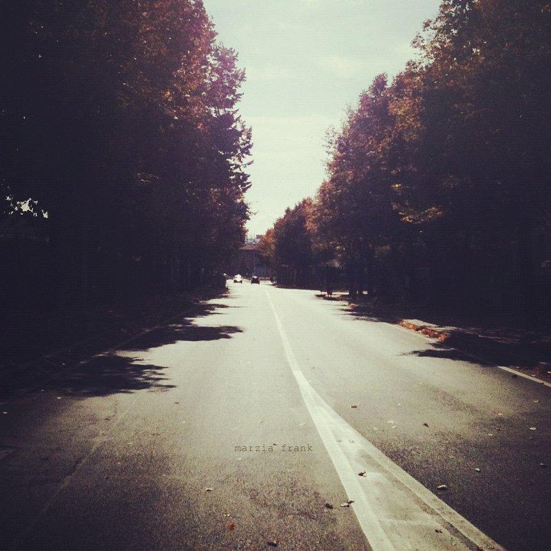 (767) The road not taken.