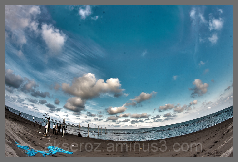 seaside+Seashore