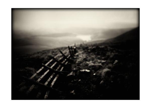 Fallen Fence