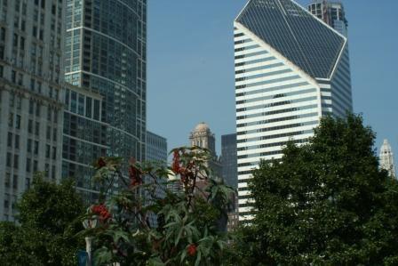 Millenium Park- Urban Garden