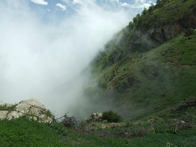 Fog in the Mountain