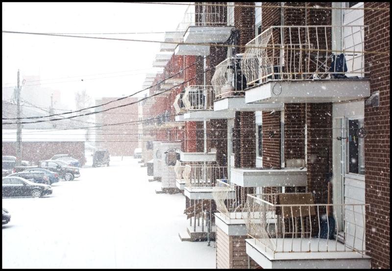 Snow storm 2 - Tempête 2