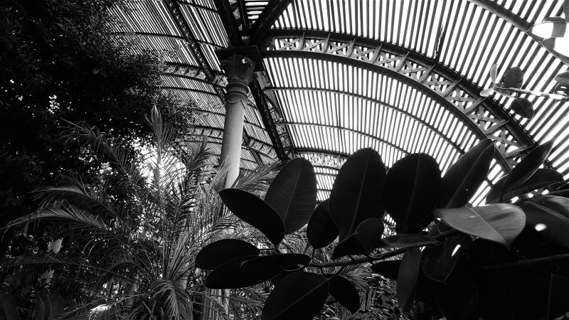 parc ciutadella ombracle barcelona