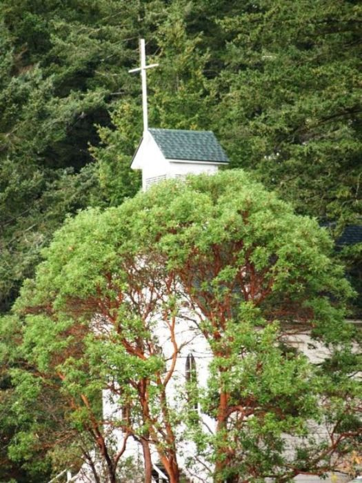 Roche Harbor Church