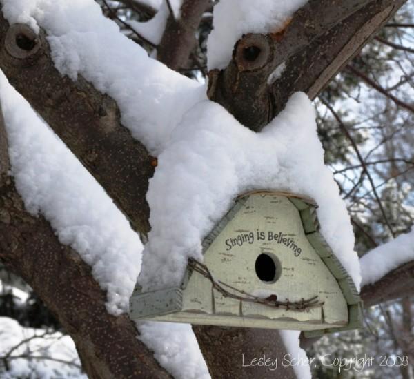 Farewell, Thee Winter (III)