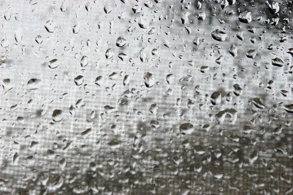 Raindrops gather on a rainy day
