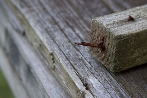 Rusted Nails in Wood