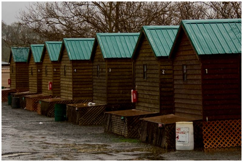 A Row of Cabins