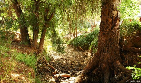 Dry River 2