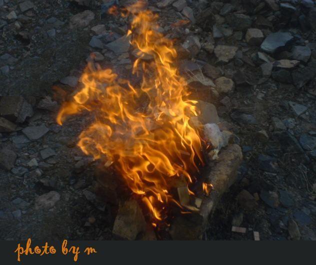 مرغ آتش !