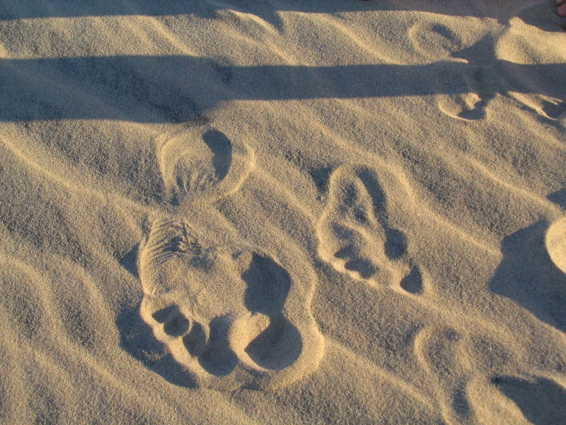 Footprints of mother and child