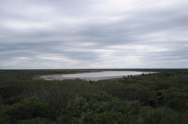 A pond at Laguna Atascosa