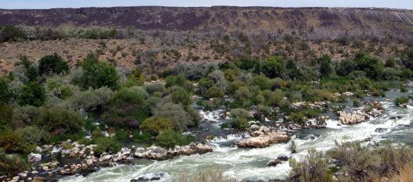 River through the desert
