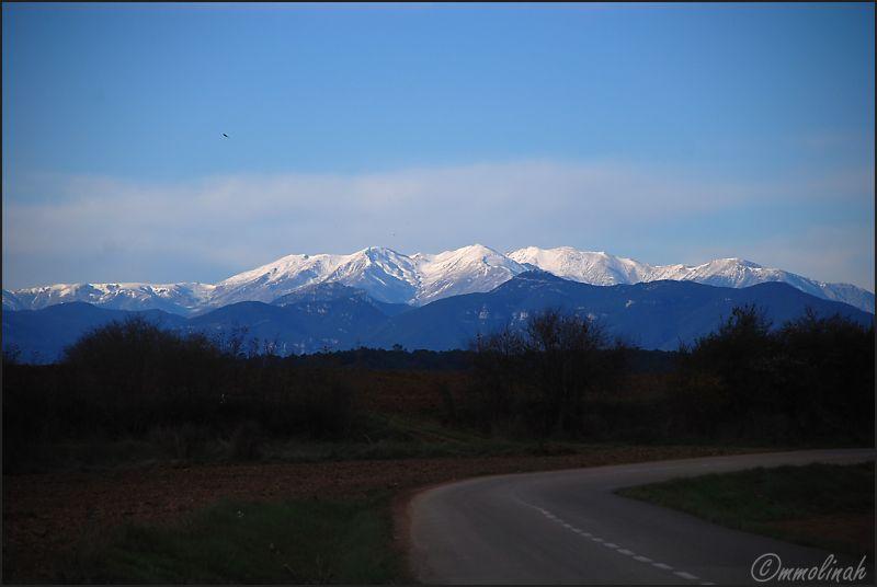 Canigó Mountain #2