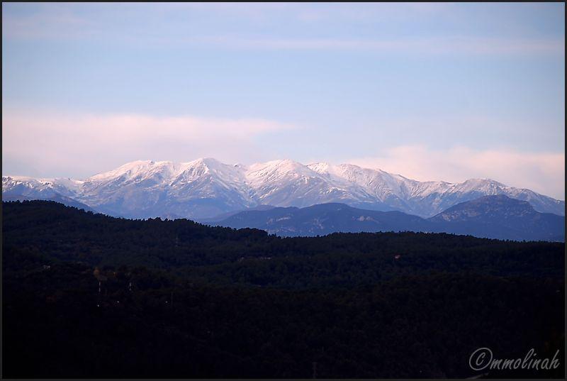 Canigó mountain #4