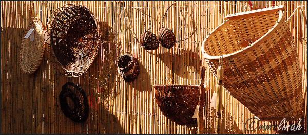 Basket cane's holiday #4