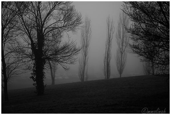 A foggy day.......( to be continued).....