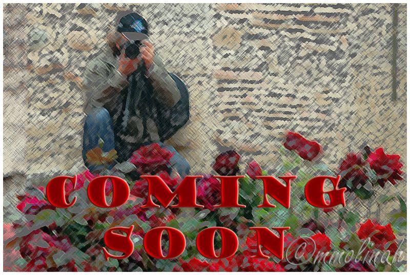 Cooming soon
