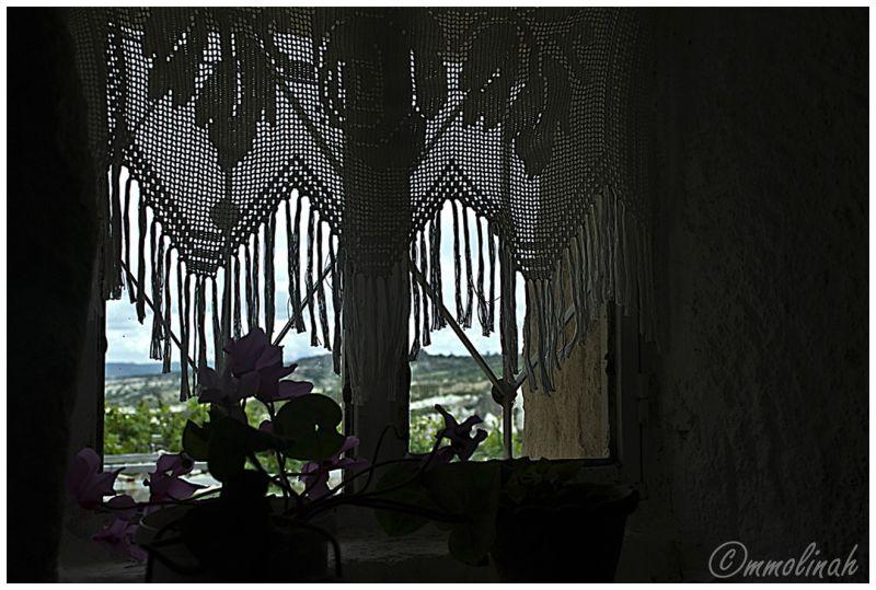 Windows's net curtain