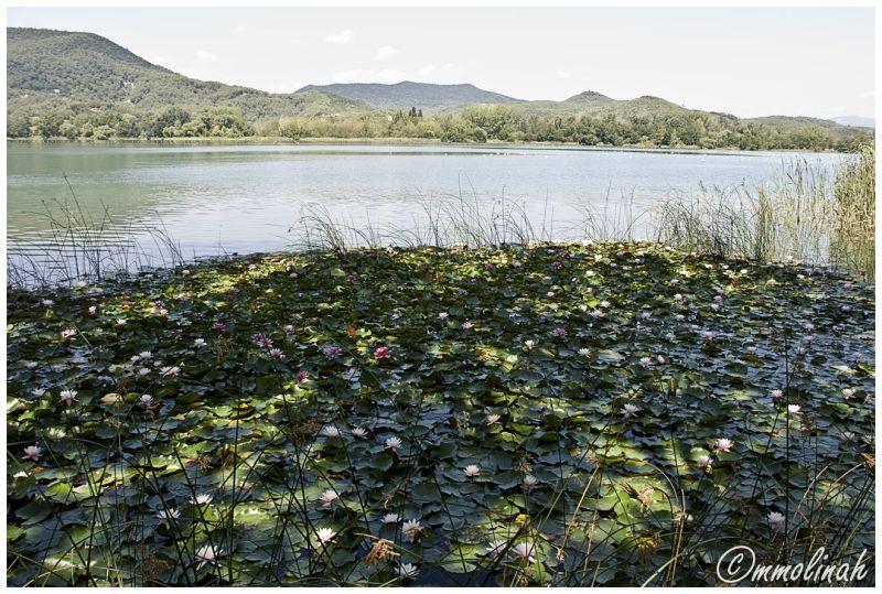 Banyoles's Lake