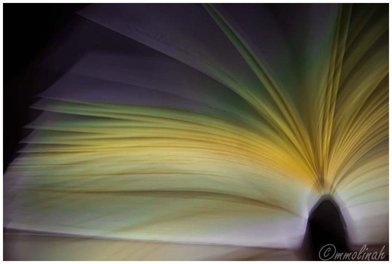 book llibre libro mmolinah