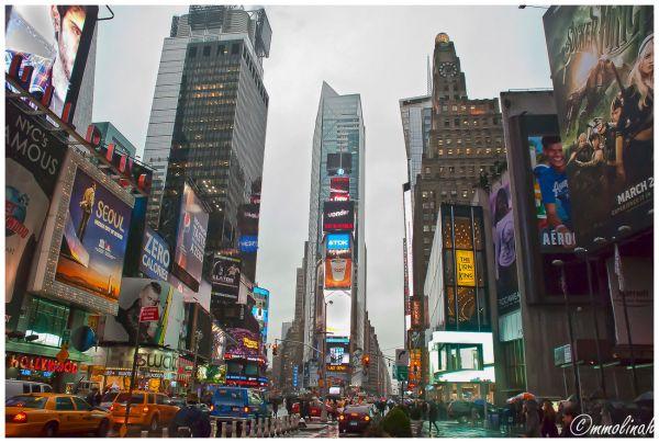NEW YORK (Manhatan #9)