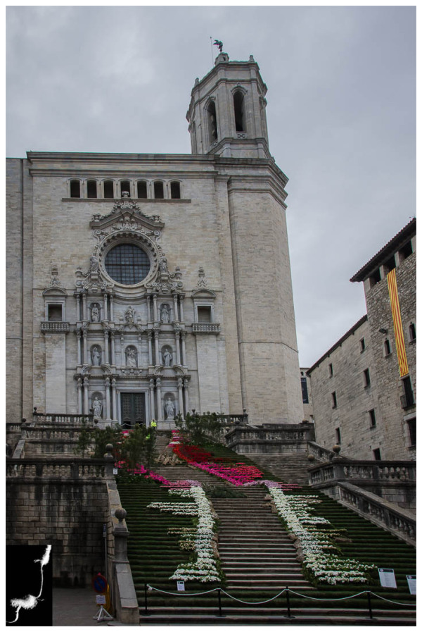 FLOWERS TIMES FROM GIRONA (Cathedral)