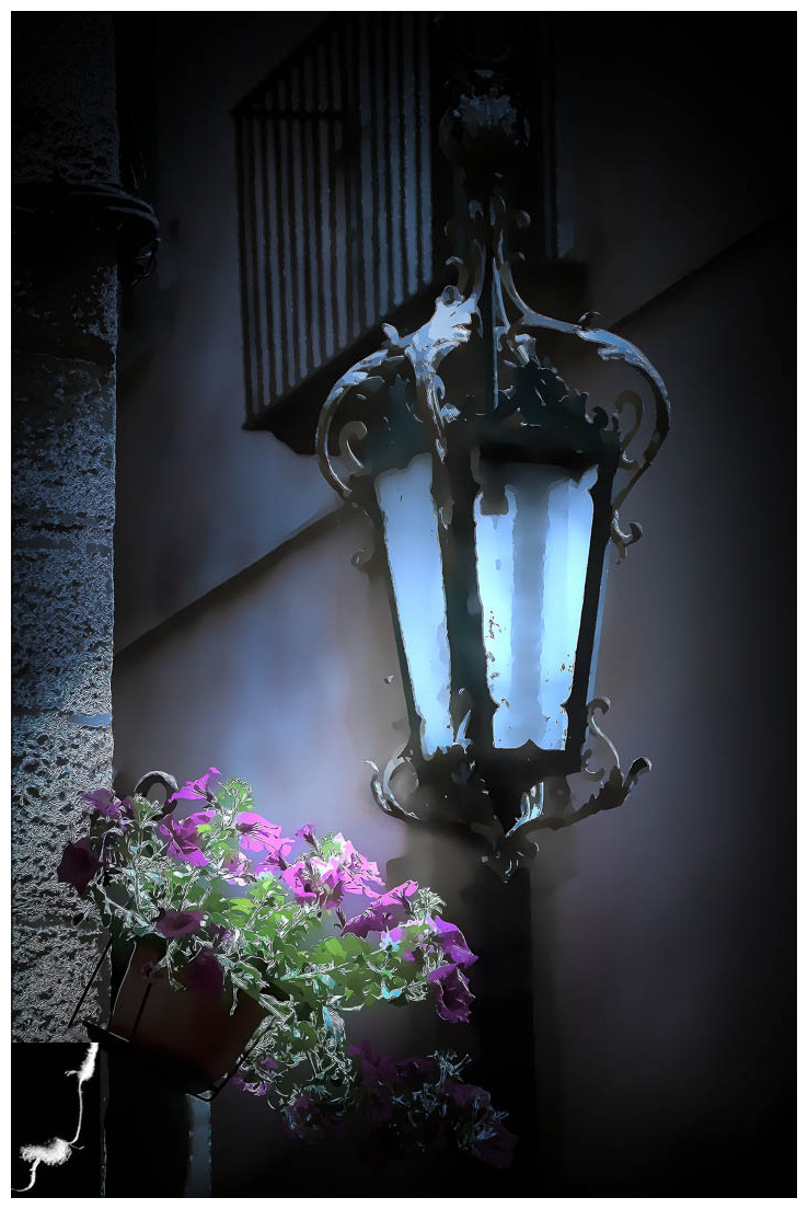 FLOWERS TIMES FROM GIRONA (lampost)