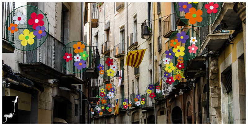 FLOWERS TIMES FROM GIRONA (street)