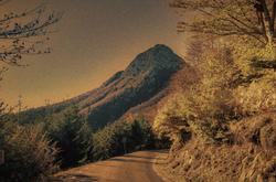 Postcard Of The Autumn In Mountain